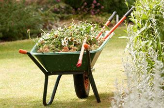 yard-waste-in-wheelbarrow
